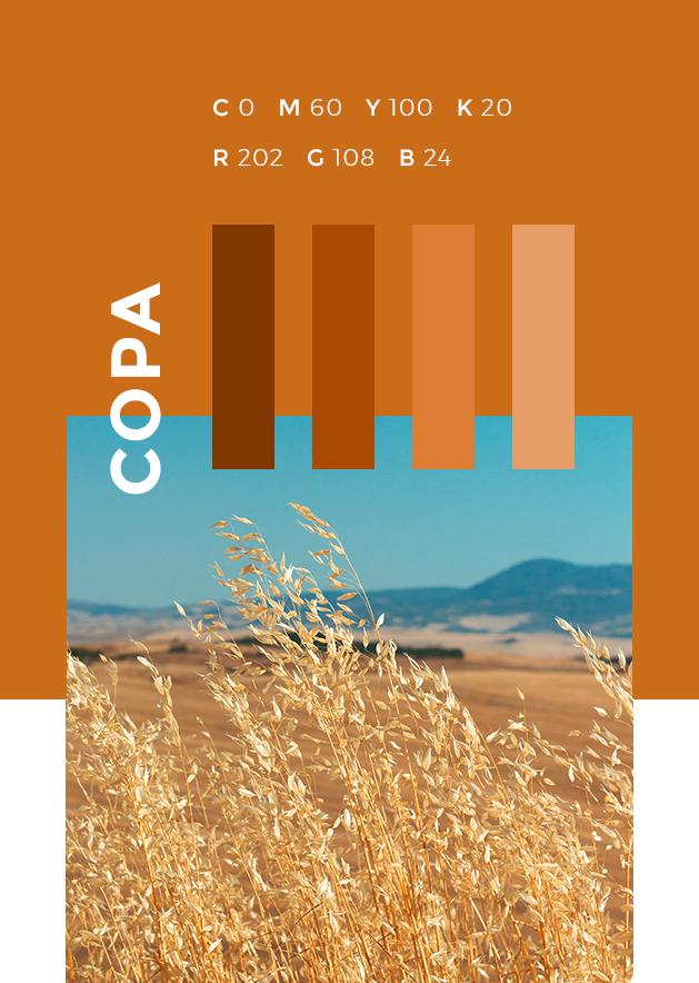 COPA COGECA colour research orange